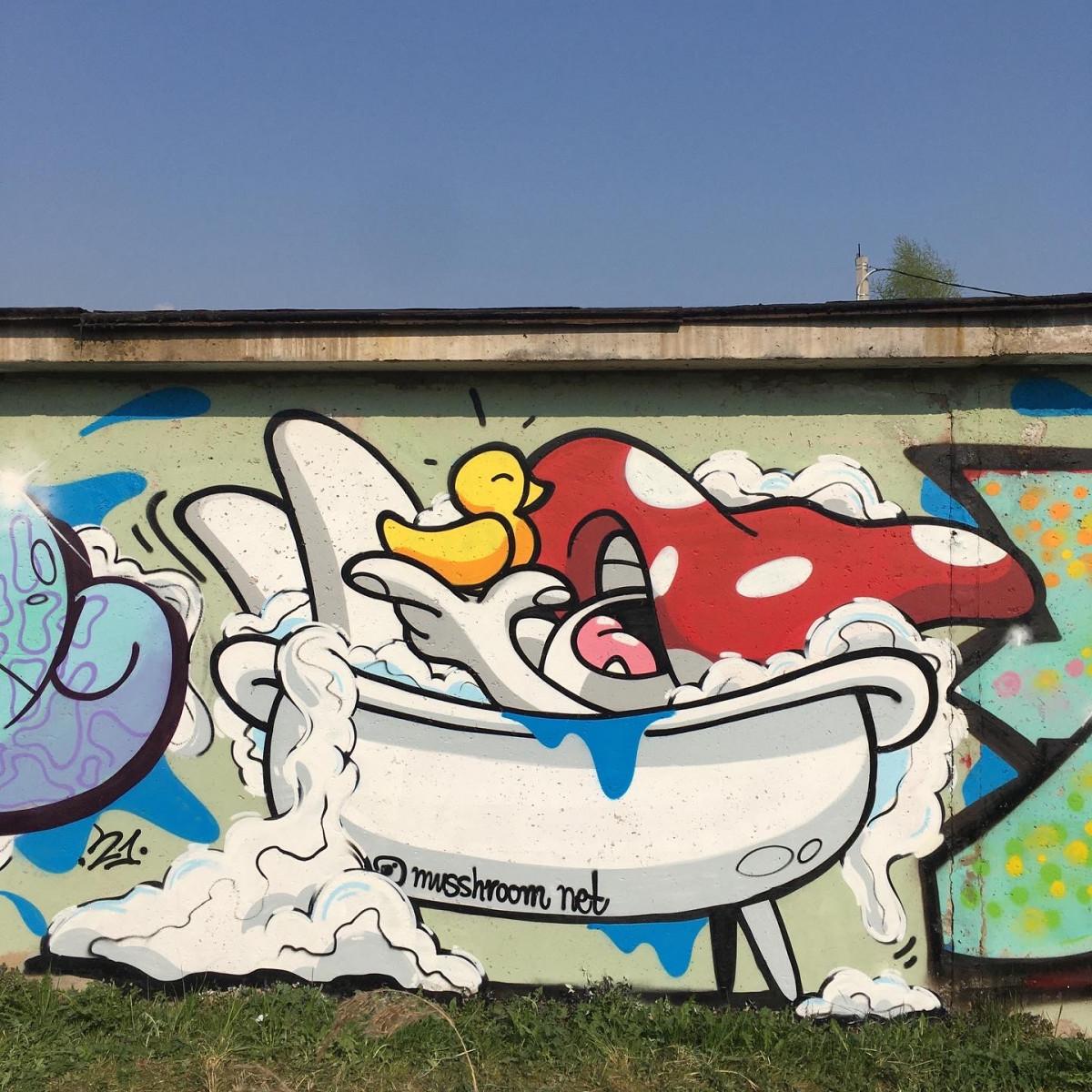 Mushroom net: интервью с грибным Бэнкси из Великого Новгорода