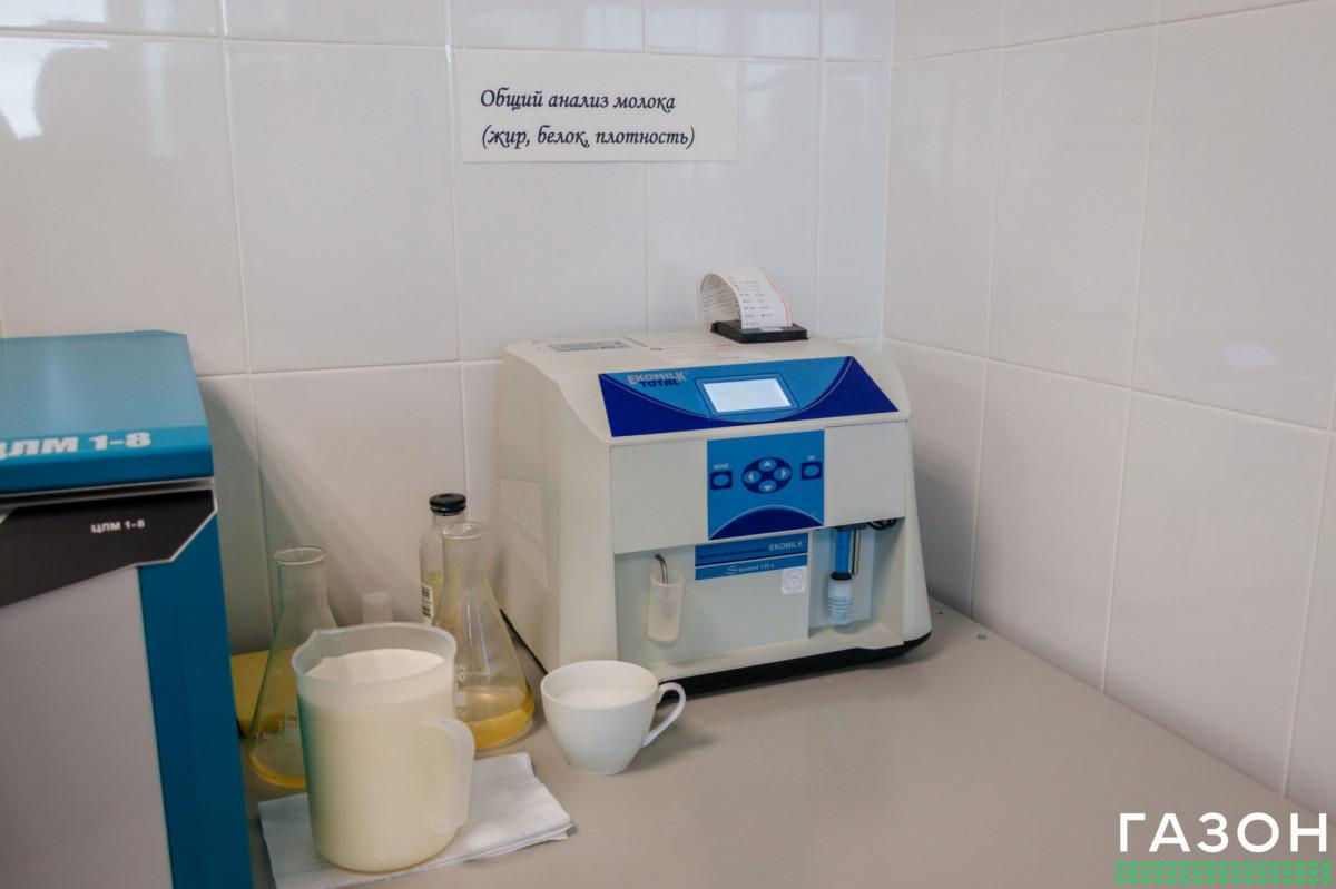 На конференции в НовГУ рассказали, как при помощи сухого порошка круглый год производить сыр высокого качества