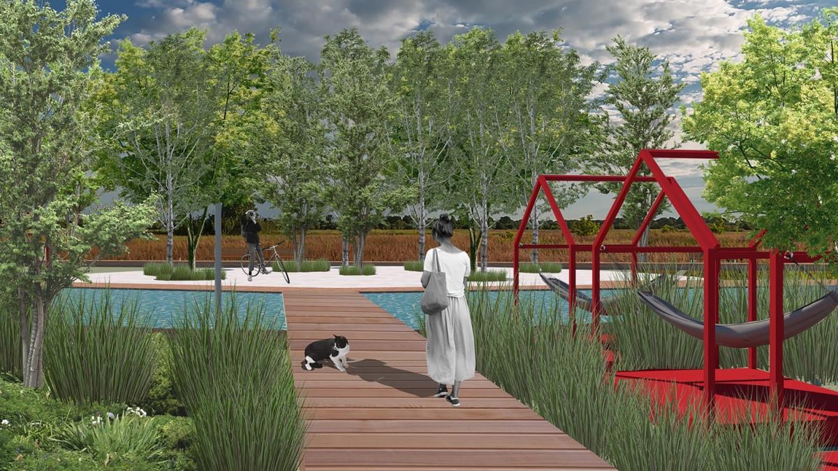 Верёвочный парк, танцплощадка и зона с гамаками: Что студенты придумали для берёзовой рощи в Деревяницах